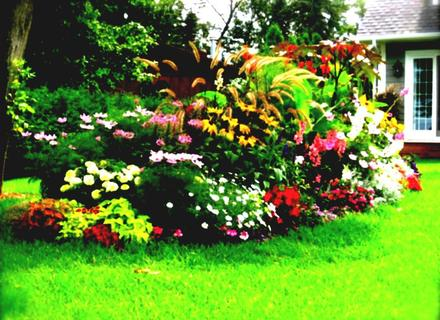 Tags Low Maintenance Flower Bed Ideas Flower Bed Ideas Small Ifmore